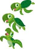 Cartoon sea turtle Stock Images