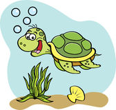 Cartoon sea turtle swimming underwater. Royalty Free Stock Image