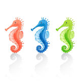 Cartoon Seahorses Stock Photo