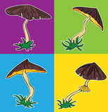 Cartoon seasonal mushroom with brown cap  illustration Stock Photo