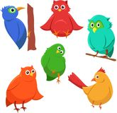 Cartoon set of colorful cute funny birds Royalty Free Stock Photos