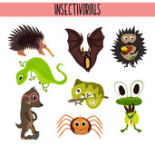 Cartoon Set of Cute Animals insectivores living in different parts of the world forests and tropical jungle .A bat, a lizard, hedg Stock Images