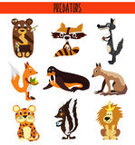 Cartoon Set of Cute Animals predators living in different parts of the world forests, seas and tropical jungles . Crocodile. skunk Stock Photos