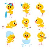 Cartoon set of cute Easter baby chicken character. Cartoon set with cute baby chicken character running, flying, training, sitting in egg shell, vector Royalty Free Stock Photos