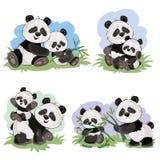Cartoon Set Of Cute Panda Bear Characters Stock Photo