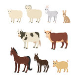 Cartoon set: sheep goat donkey horse cow bull pig rabbit Stock Photo