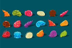 Cartoon set with shiny sea shells of different shapes and kinds. Colorful aquarium decor objects. Flat vector design. Cartoon set with shiny sea shells of Royalty Free Stock Images