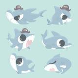 Cartoon shark collection set. Stock Images