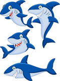 Cartoon shark collection set Royalty Free Stock Photos