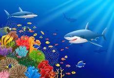 Cartoon shark with Coral Reef Underwater. In Ocean illustration Stock Photo