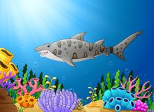 Cartoon shark fish in the beautiful underwater. Illustration of Cartoon shark fish in the beautiful underwater Stock Photo