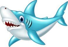 Cartoon shark isolated on white background Stock Image