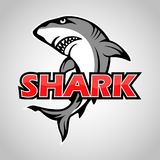 Cartoon shark mascot with blue circle on gray background. Illustration of Cartoon shark mascot on gray background Stock Images