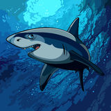 Cartoon shark swimming underwater in the blue sea. Cartoon shark swimming underwater in blue sea Royalty Free Stock Image