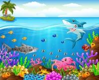 Cartoon shark  under the sea Stock Photos