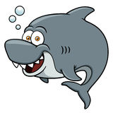 Cartoon Shark Royalty Free Stock Photos