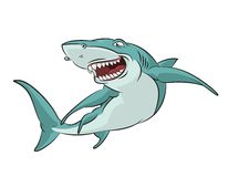 Cartoon Shark Stock Photos