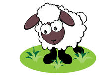 Cartoon Sheep. On the meadow. Illustration for design Royalty Free Stock Images