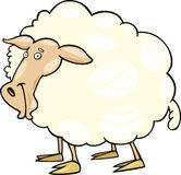 Cartoon sheep Royalty Free Stock Photos