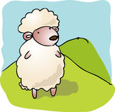 Cartoon sheep Royalty Free Stock Photos