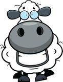 Cartoon Sheep Grinning Royalty Free Stock Photos