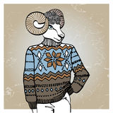 Cartoon sheep in Jacquard sweater.Winter fashion Royalty Free Stock Images