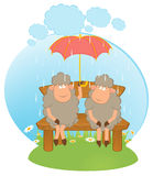 Cartoon sheep with umbrella. Stock Images