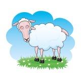 Cartoon sheep. Royalty Free Stock Photo
