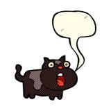 cartoon shocked cat with speech bubble Royalty Free Stock Image
