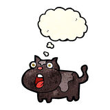cartoon shocked cat with thought bubble Stock Photo