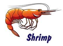 Cartoon shrimp icon or emblem Royalty Free Stock Image