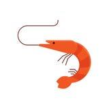 Cartoon Shrimp Vector Icon. Stock Images