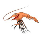 Cartoon shrimp Stock Photography