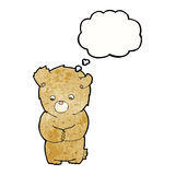 cartoon shy teddy bear with thought bubble Royalty Free Stock Photos