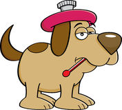 Cartoon sick dog with a thermometer. Royalty Free Stock Photos