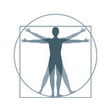 Cartoon Silhouette Vitruvian Man. Vector stock image