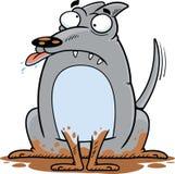 Cartoon Silly Dog Stock Photos