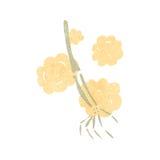 Cartoon skeleton arm Stock Photo