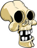 Cartoon skull with big teeth Royalty Free Stock Photo