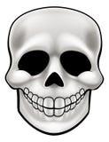 Cartoon Skull Stock Photo