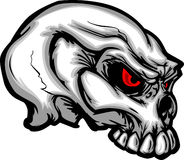 Cartoon Skull Image Vector Stock Photos