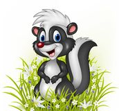 Cartoon skunk on grass background Royalty Free Stock Images