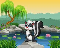 Cartoon skunk presenting on the rock Stock Images
