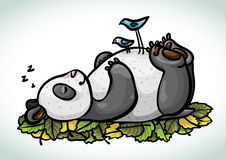 Cartoon sleeping panda and birds Royalty Free Stock Image