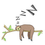 Cartoon sleeping sloth Stock Images
