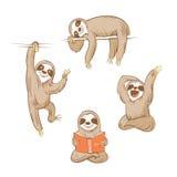 Cartoon sloths set. Cartoon cute  sloths set. Four sloths. Vector image Stock Images