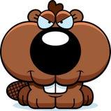 Cartoon Sly Beaver Kit Stock Photo