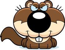 Cartoon Sly Squirrel Royalty Free Stock Image