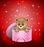 Cartoon small bear in a gift box Royalty Free Stock Images