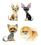 Cartoon small dogs. Gouache hand drawn illustration vector illustration